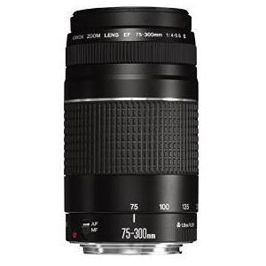 2.Canon EF 75-300mm 4,0-5,6 III