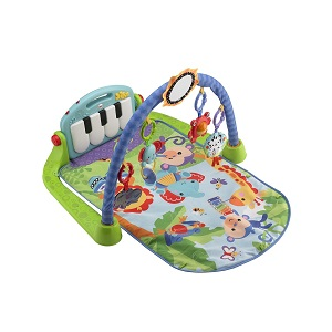 1.Fisher Price BMH49