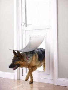 Le migliori porte per cani classifica e recensioni del for Porta basculante per cani grandi con microchip